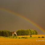 Rainbow in Farm Country