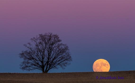 Moonrise into the Autumn Sky