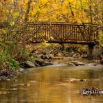 Bridge Over Golden Water